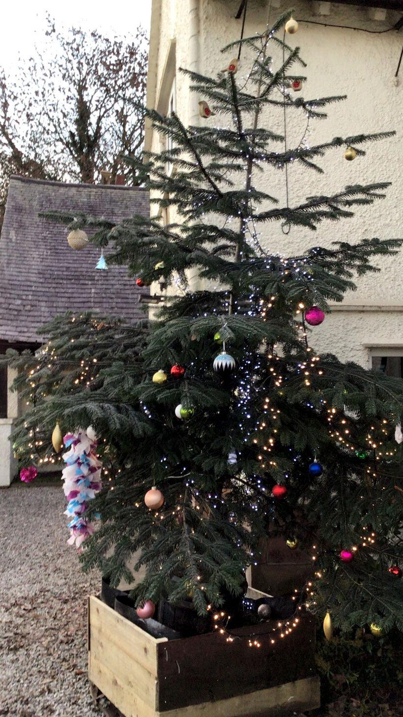 Cranage Community Christmas Tree