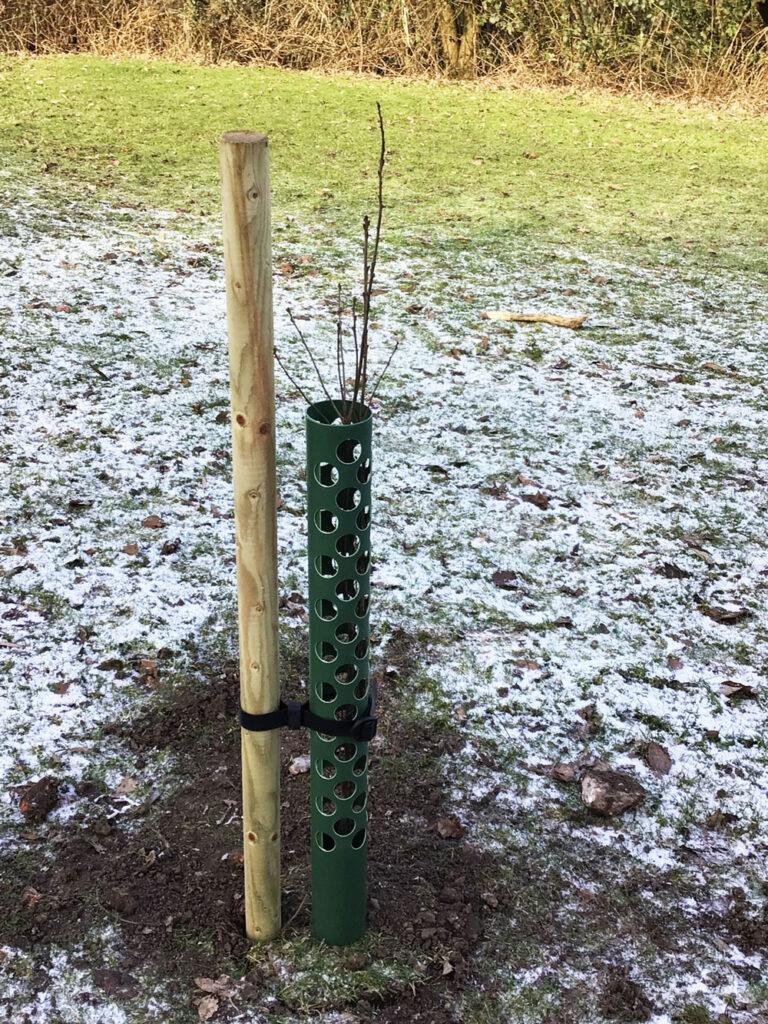 Cranage Parish Council Tree Planting